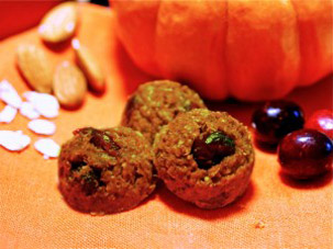Pumpkin Cranberry Morsels